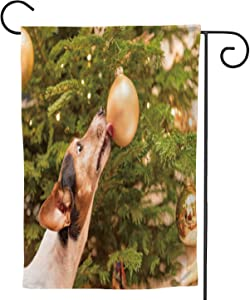 C COABALLA Cute Little Jack Russell Terrier Dog with Nose and Tongue at The Christmas Tree a Ball Eve German,Welcome Garden Flag Garden ard Banner Lawn Outdoor Decoration Dog 28''x40''