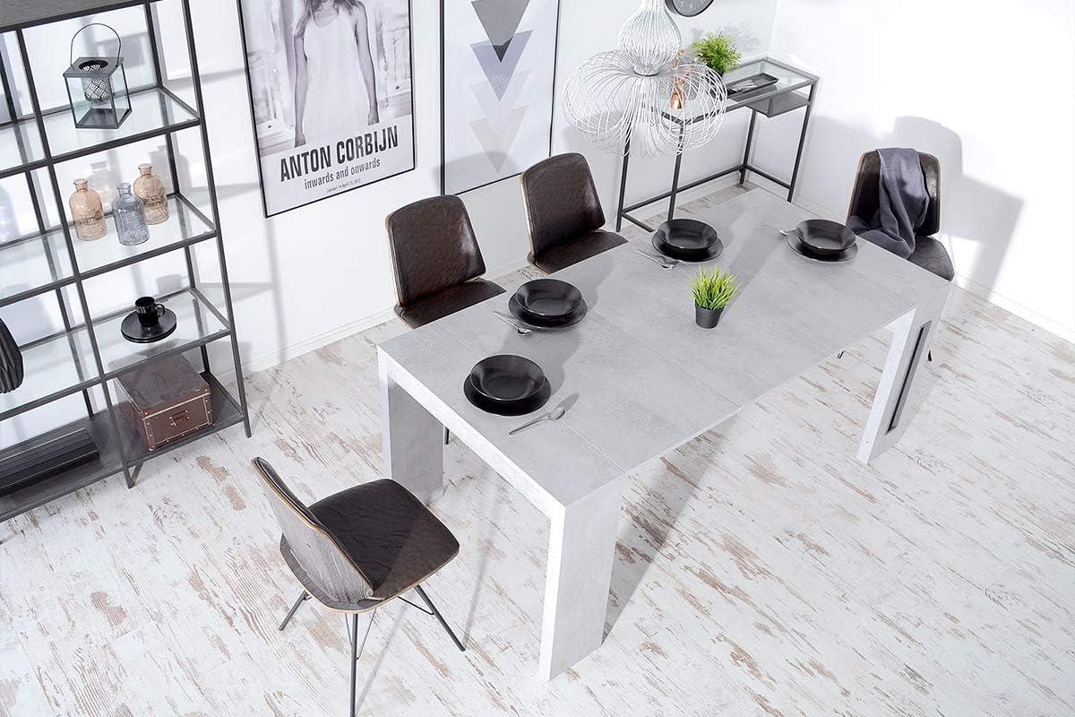 Stuhl Tisch Esszimmer Möbel Polster pull Schnalle Sessel
