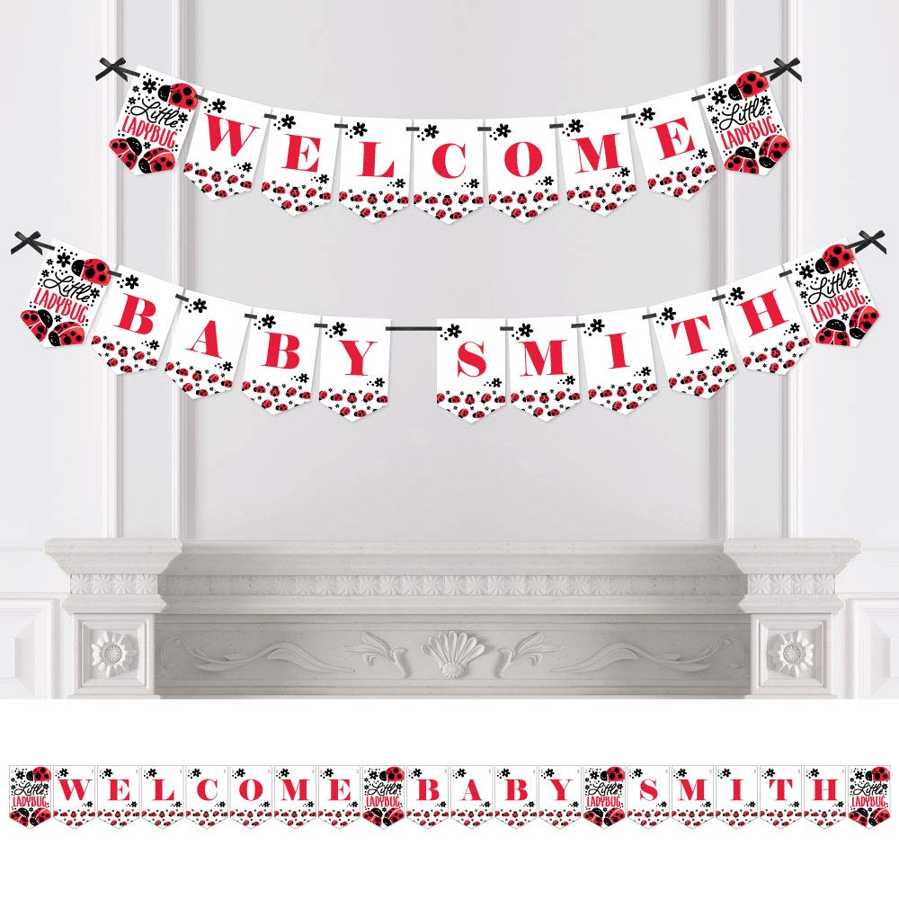 Big Dot of Happiness Personalized Happy Little Ladybug - Custom Baby Shower Bunting Banner & Decorations - Welcome Baby Custom Name Banner