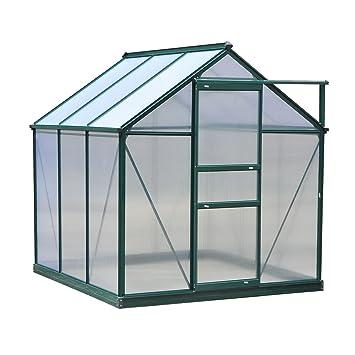 Amazon.com : 6\'x6\'x7\' Aluminum Frame Walk In Greenhouse Garden Plant ...