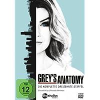 Grey's Anatomy: Die jungen Ärzte - Die komplette 13. Staffel [6 DVDs]