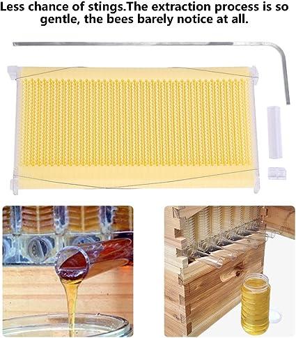 Beehive Frame Lot de 7 peignes en plastique pour apiculture /à d/ébit automatique