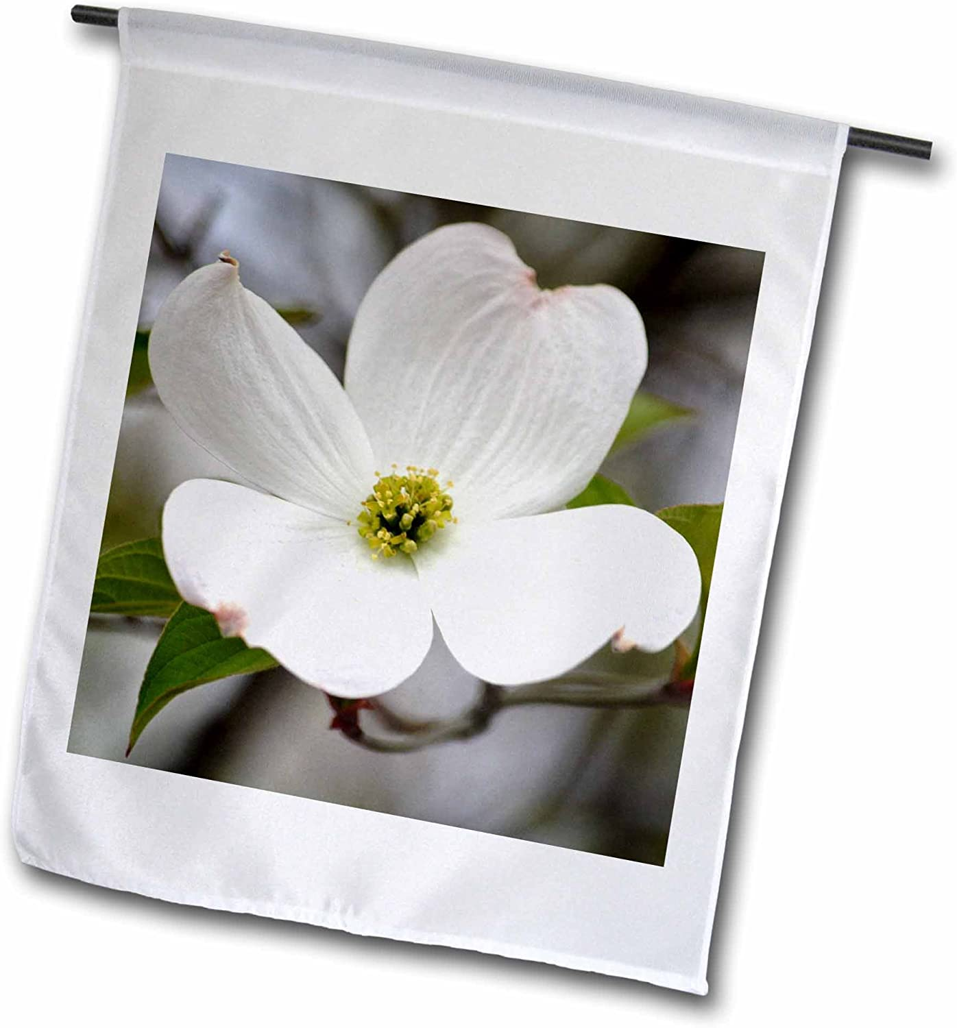 """3dRose Pure White Dogwood Flower - Spring Photography - Garden Flag, 12 by 18"""""""