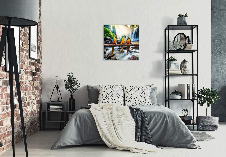 Images sur Toile D/écoration Murale Design perroquets Eau Orange Tableaux pour la Mur Impression Artistique Revolio Taille: 30x40 cm