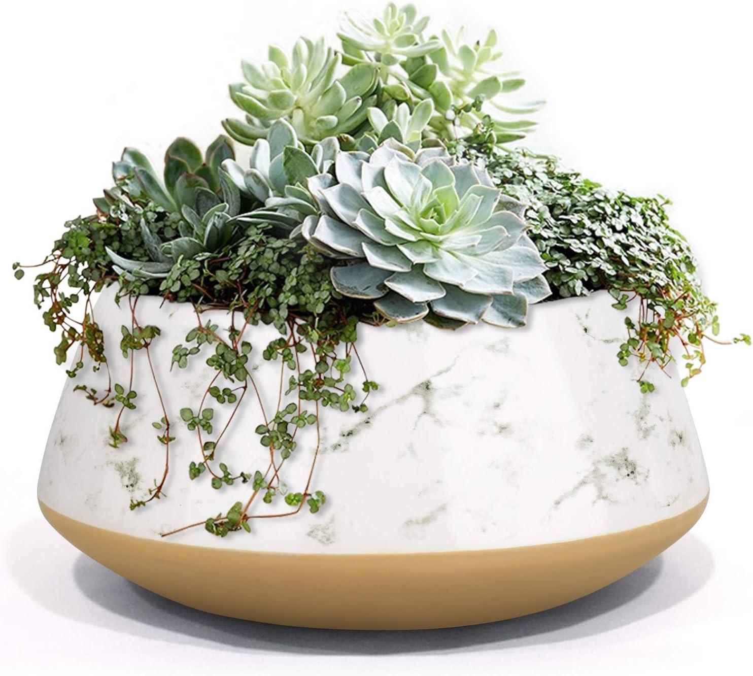 LA JOLIE MUSE Large Succulent Planter Plant Pots, Ceramic Indoor Outdoor Garden Pot with Drainage for Plant Flower, 8 Inch, Splash Ink & Sandy Beige