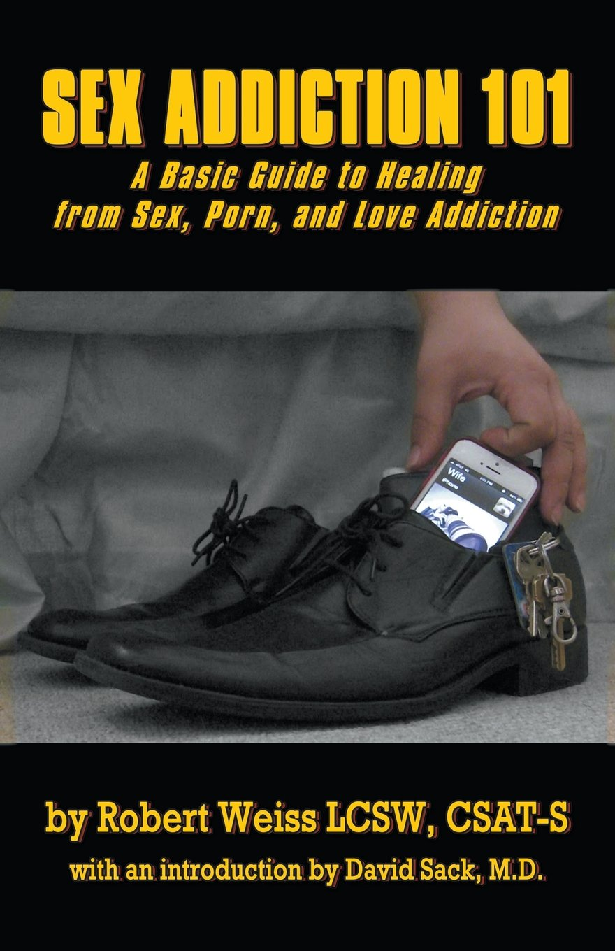 Download Sex Addiction 101: A Basic Guide to Healing from Sex, Porn, and Love Addiction PDF