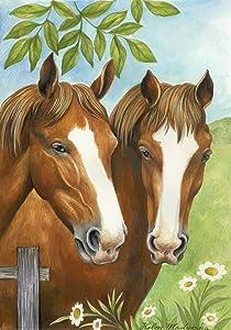 Toland Home Garden Twin Horses 12.5 x 18 Inch Decorative Spring Summer Horse Family Farm Garden Flag
