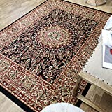 Maxy Home Pasha Traditional Medallion Multicolor 7 ft. 10 in. x 10 ft. 6 in. Area Rug Review