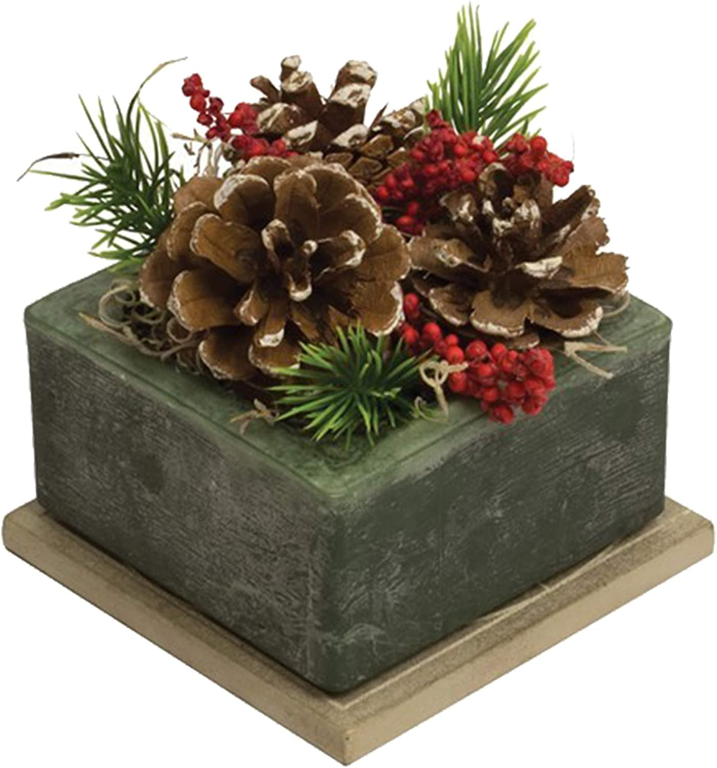 Habersham Candles Wax Pottery Geo Scented Succulent Cube Bowl, Frosted Pine Cone