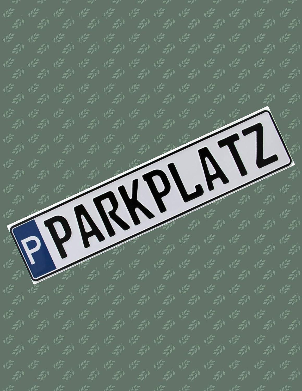 PKW Kennzeichen EU Schilder Parkplatz 520x110