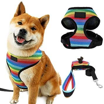 ZREAL Mascotas Ropa para Perros Arnés Transpirable Cachorro de ...