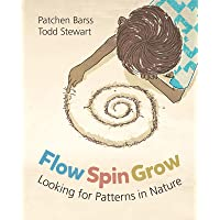 Flow, Spin, Grow: Looking for Patterns in Nature