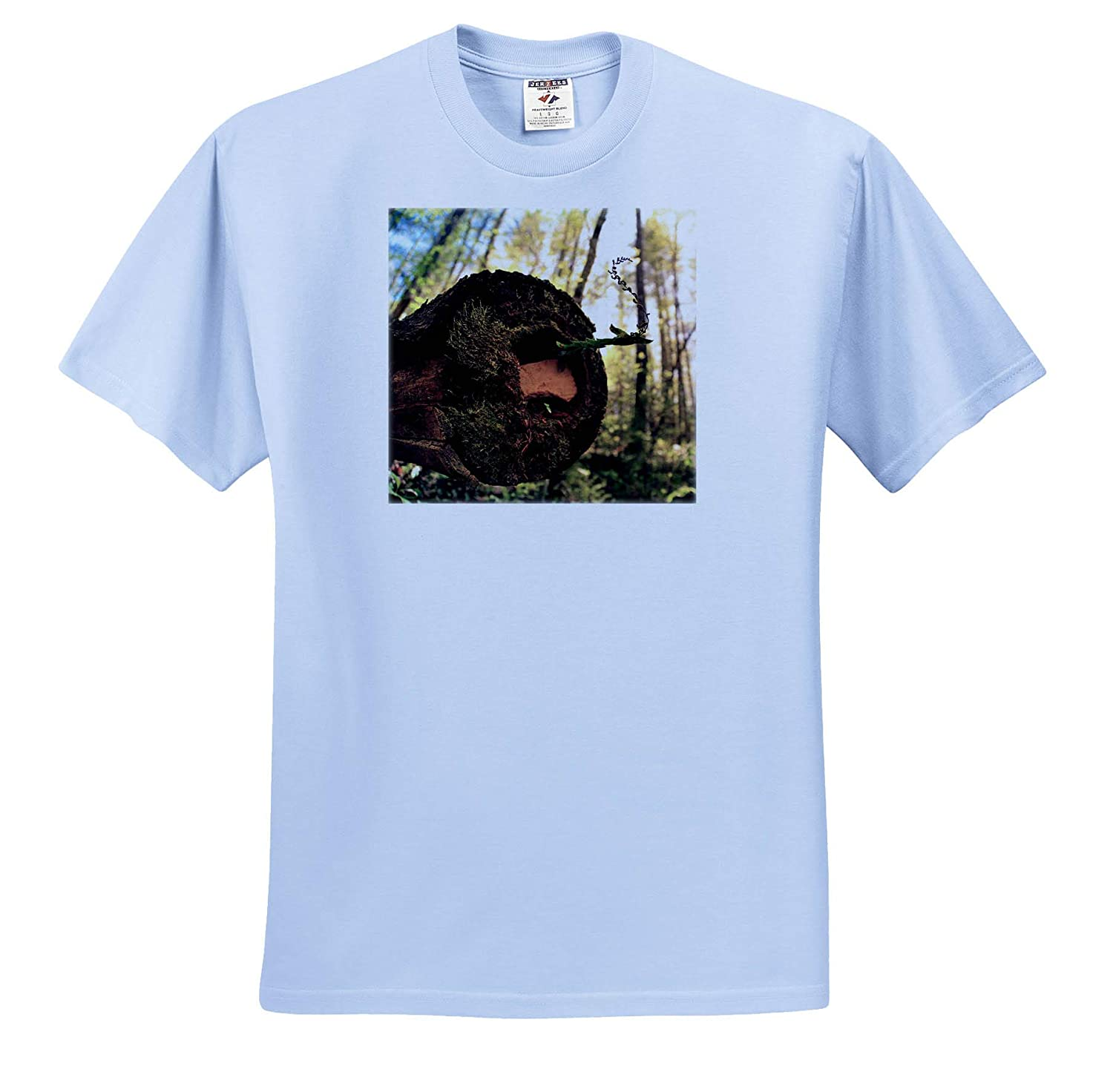 Photo of Fallen Dead Tree on a Nature Trail with Life Still Emerging - T-Shirts Nature 3dRose Stamp City