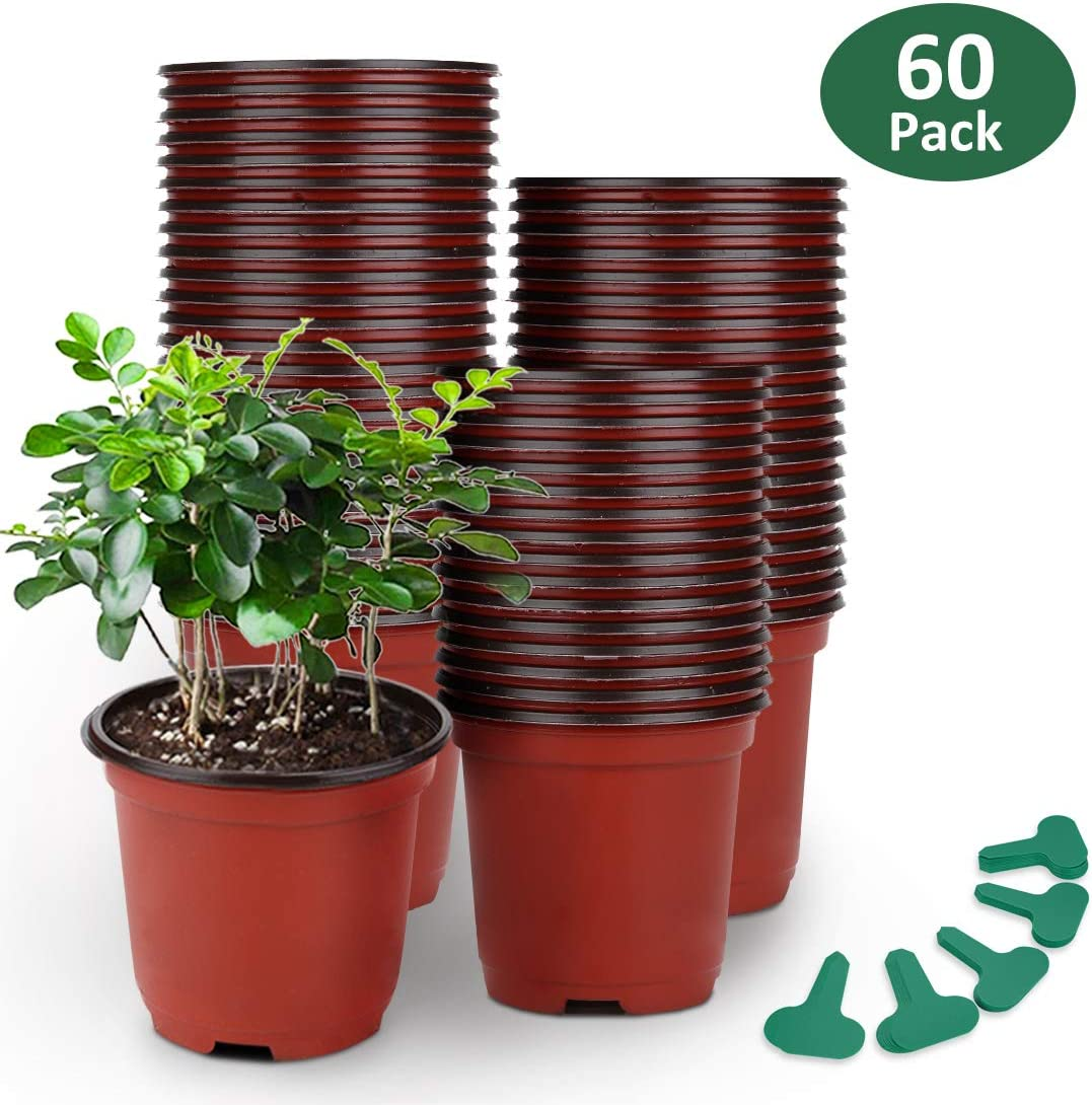 KINGLAKE 50 Pcs 6 Plastic Plants Nursery Seedlings Pot//Pots Flower Plant Container Seed Starting Pots