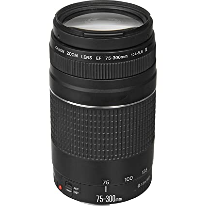 67f62265f6 Image Unavailable. Image not available for. Color: Canon EF 75-300mm f/4-5.6  III ...