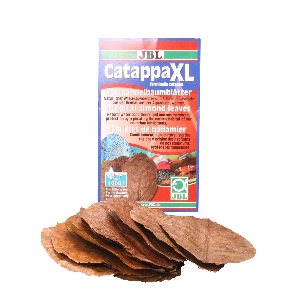 JBL Catappa XL - Hojas de almendras Tropicales (10 Unidades): Amazon.es: Productos para mascotas