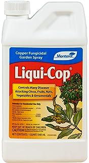 Amazon com : Southern Ag - Liquid Copper Fungicide