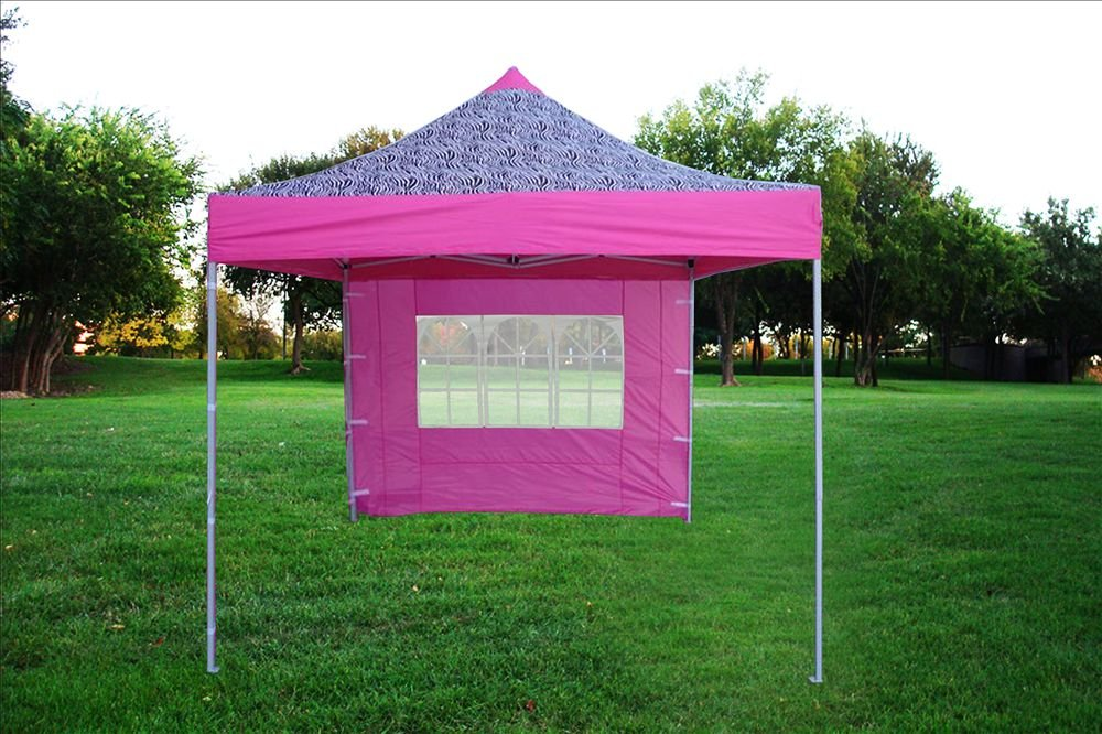 Amazon.com 10u0027x10u0027 Pop up 4 Wall Canopy Party Tent Gazebo Ez Pink Zebra - F Model Upgraded Frame By DELTA Canopies Garden u0026 Outdoor & Amazon.com: 10u0027x10u0027 Pop up 4 Wall Canopy Party Tent Gazebo Ez Pink ...
