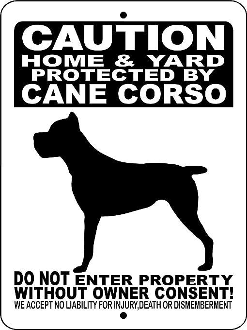 Amazon.com: Mentalsign – Cartel de perro con texto en inglés ...