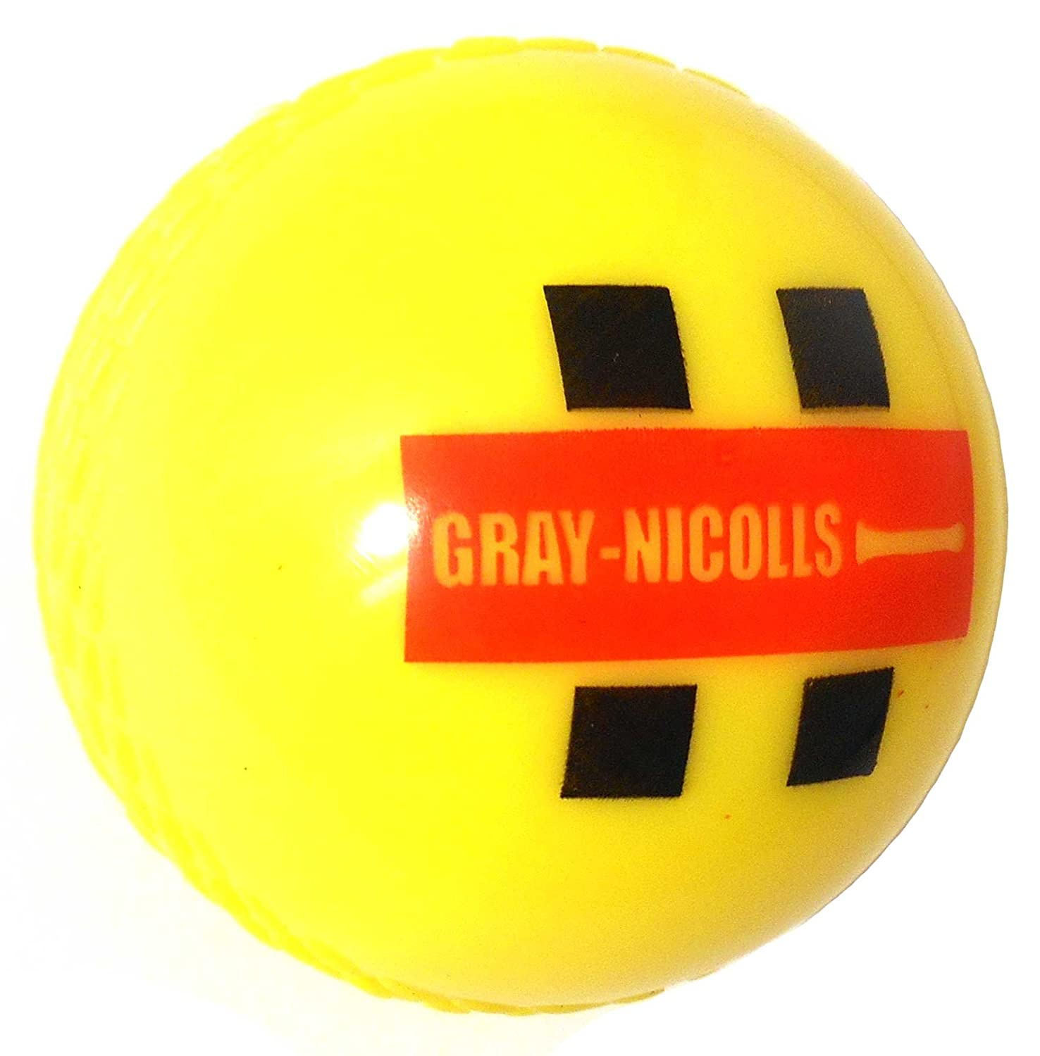 New Gray Nicolls Cricket Players Training Match Playing Practicing Indoor Ball by Gray-Nicolls