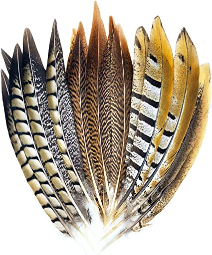 10-12 inch 10 pcs beautiful White natural pheasant tail feathers 25-30 cm