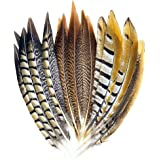 18 Pcs 3 Style Natural Pheasant Feathers for DIY Craft Wedding Home Party Decorations (25-30cm))