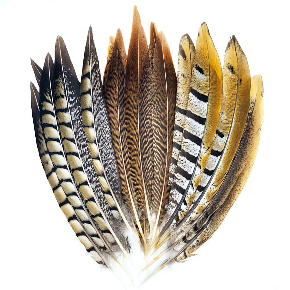 18 Pcs Natural Pheasant Feathers for Crafts DIY Decoration Collection Tails Feathers in 3 Styles 25-30cm