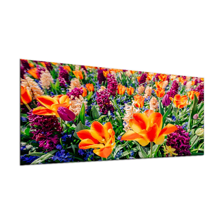 Compra decorwelt - Cubierta de vitrocerámica (90 x 52 cm, 1 ...