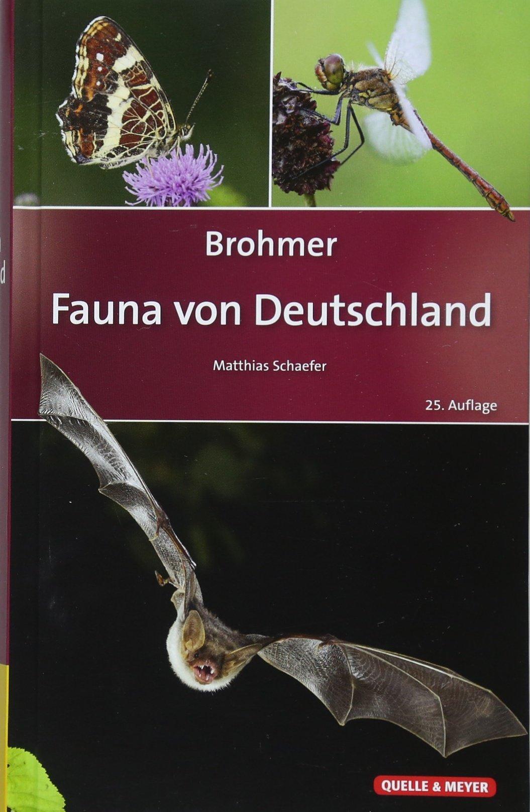 Brohmer – Fauna von Deutschland: Ein Bestimmungsbuch unserer heimischen Tierwelt (Quelle & Meyer Bestimmungsbücher)