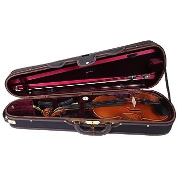pacato Deluxe - Estuche para violín: Amazon.es: Instrumentos ...