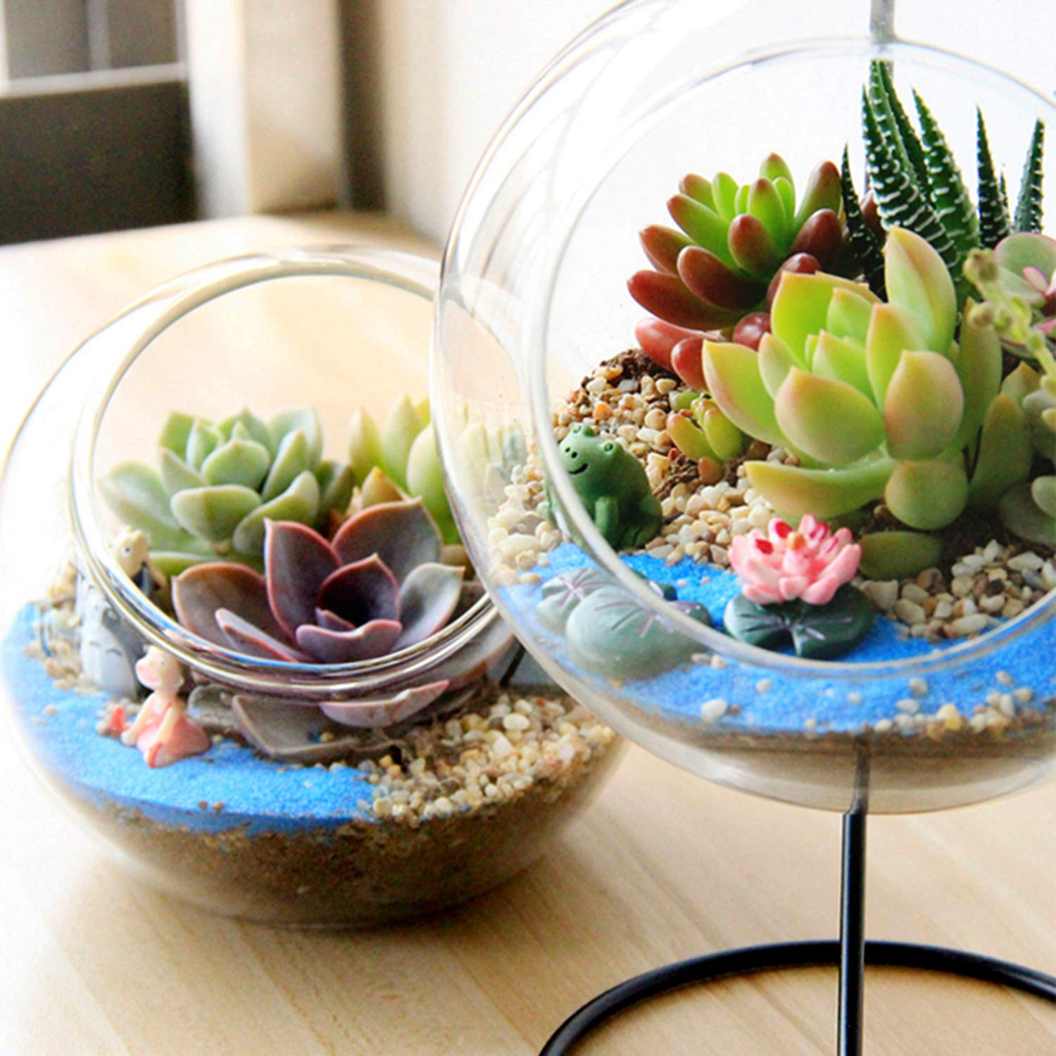 Premium Rosette Succulents, 9 Assorted Rooted Succulents in 4'' Planter Pots with Soil, Real Live Succulents Bonsai for Indoor Home Office Cactus Decor, Terrariums, Mini Garden by The Next Gardener (Image #4)