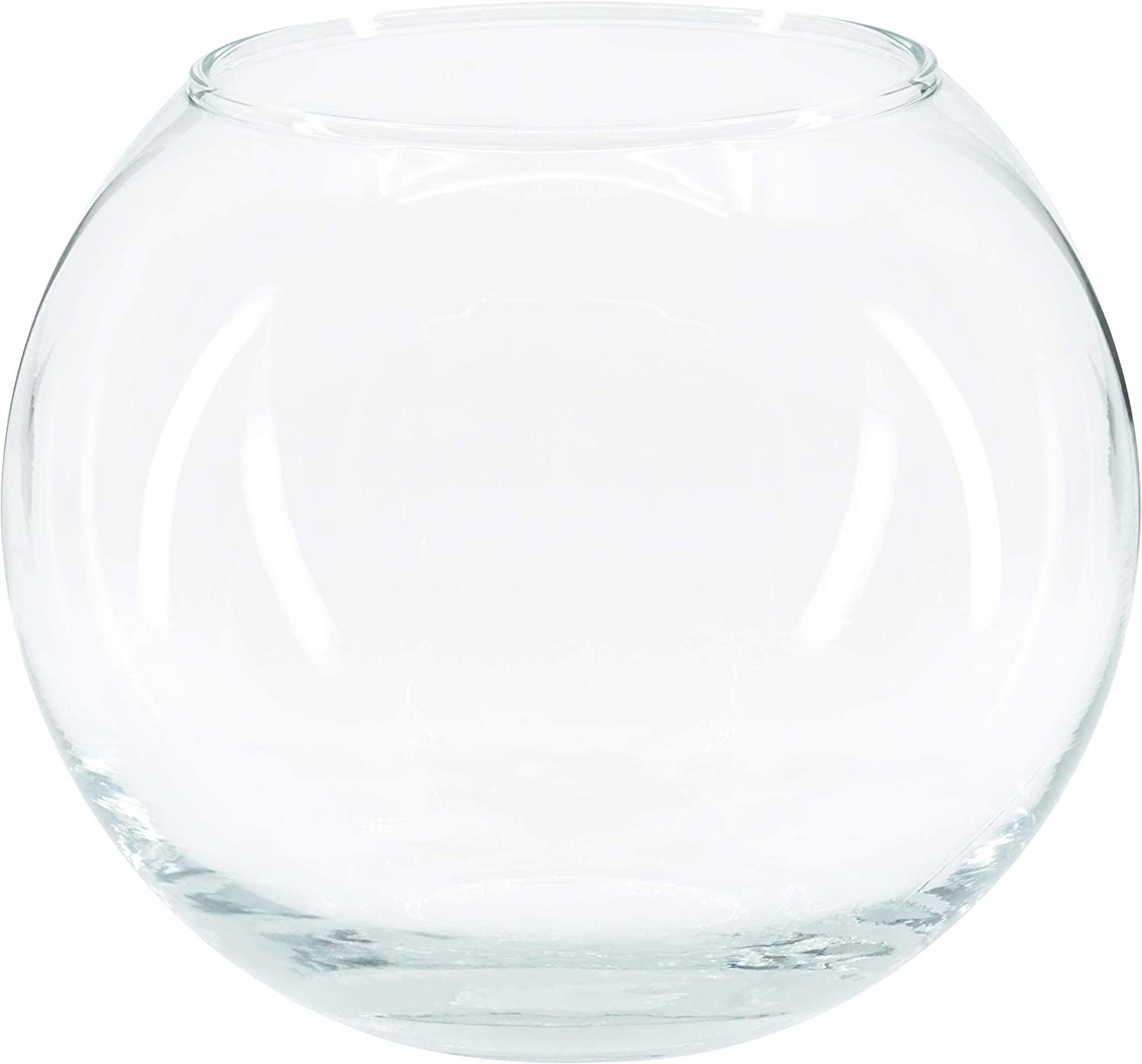 """Red Co. Decorative Glass Bowl Vase 4.5"""" Diameter Clear Bubble Planter Home Office Décor Aromatherapy Craft Projects"""