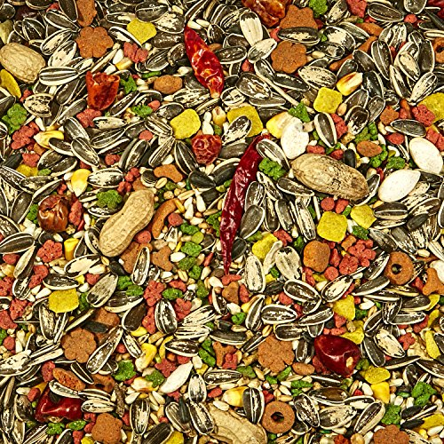 Top bird food medium parrot for 2019