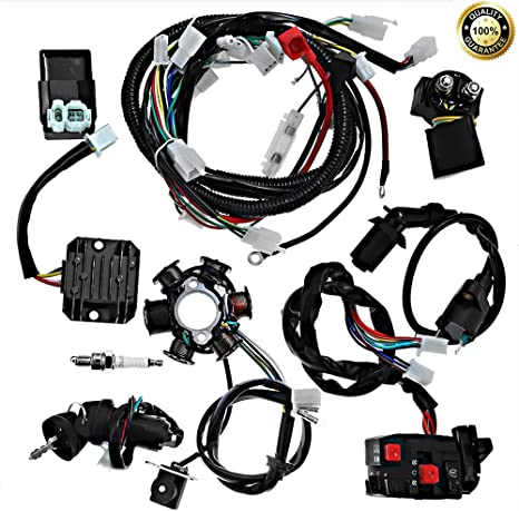 Complete electrics all wiring harness wire loom embly for GY6 4-Stroke on