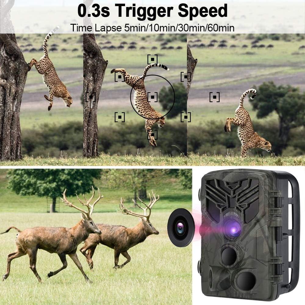 0.3s Vitesse de D/éclenchement APP Trail Cam/éra avec S/écurit/é No Glow Vision Nocturne Infrarouge activ/é 65ft//20m YTLJJ Cam/éra de Chasse WiFi Infrarouge Invisible 20MP 1080P /Écran de 2,0 Pouces