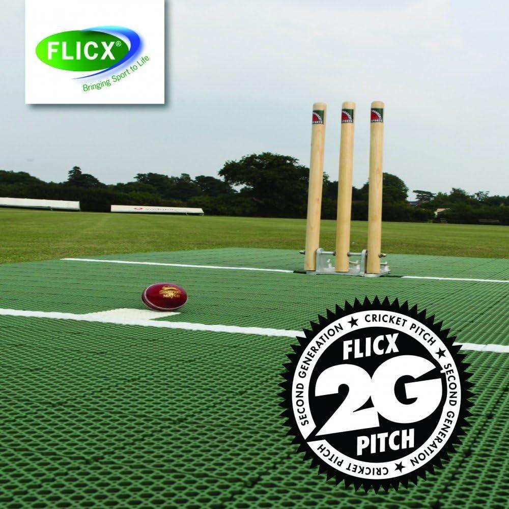 Amazon Com Flicx 2g Match Cricket Pitch Sports Outdoors