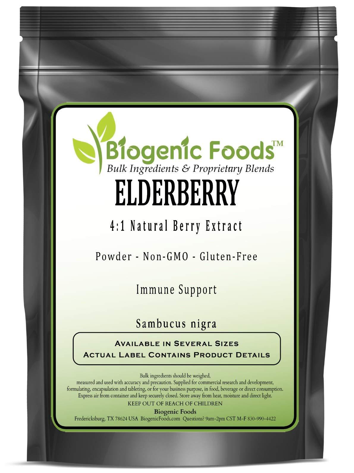 Elderberry - 4:1 Natural Berry Powder Extract (Sambucus nigra), 1 kg