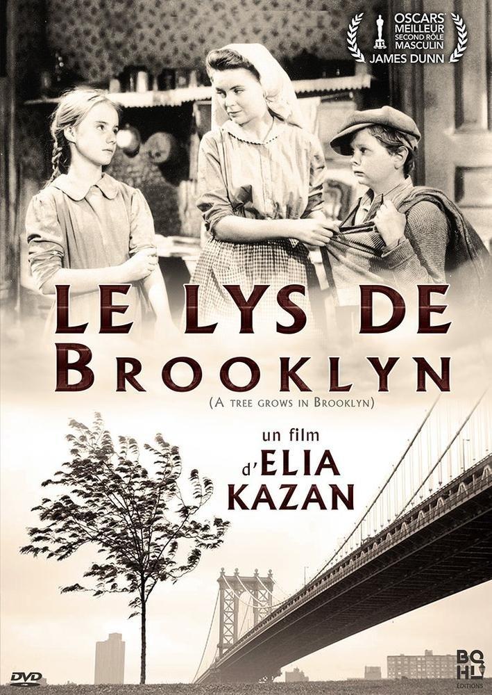 Le Lys de Brooklyn [Francia] [DVD]