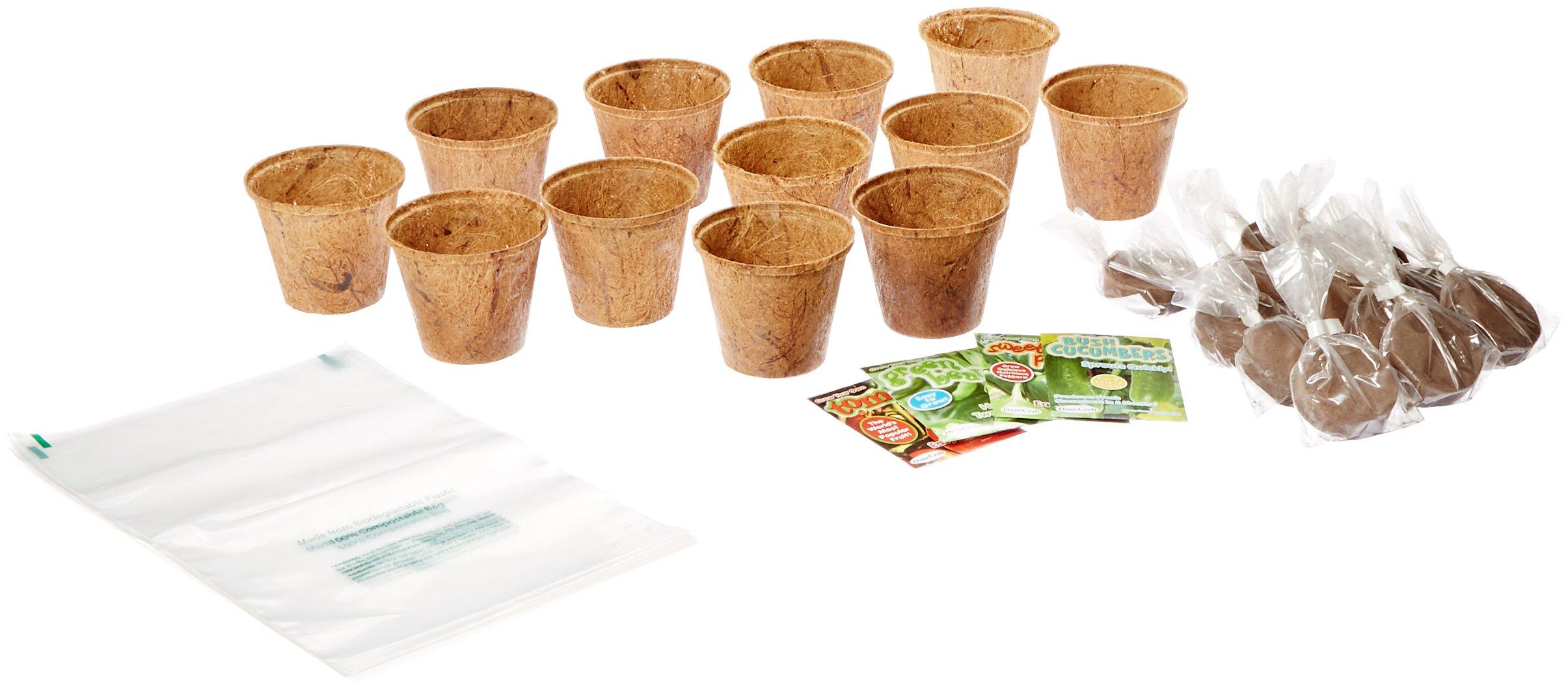 Dunecraft Organic Veggies Science Kit
