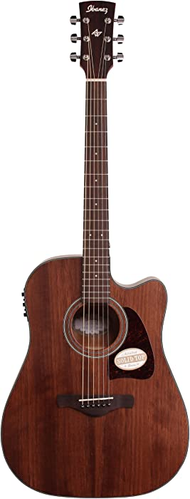 The Best Gibson Hp 665Ls Gh Acoustic Electric