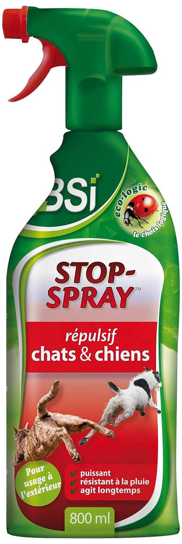 Provence Outillage Stop Spray - Repelente de Perros y Gatos: Amazon.es: Jardín