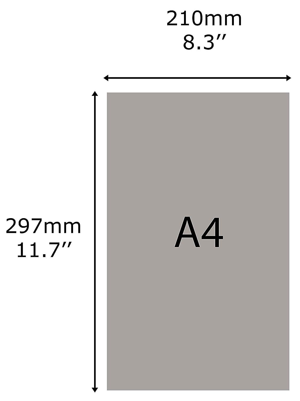 Taymar-Zwei-Etagen-Prospekthalter-Pr/äsentations-St/änder f/ür A4//DL Prospekte und Brosch/üren 2 St/ück farblos