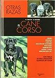 El cane corso