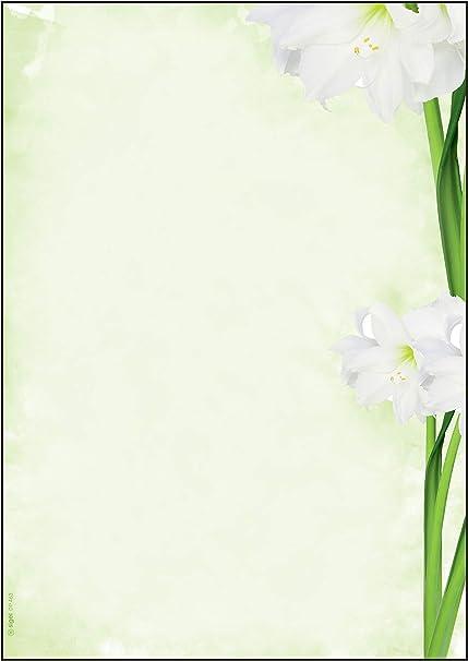 SIGEL DP463 Papel de cartas, 21 x 29,7 cm, 90g/m², lirios ...