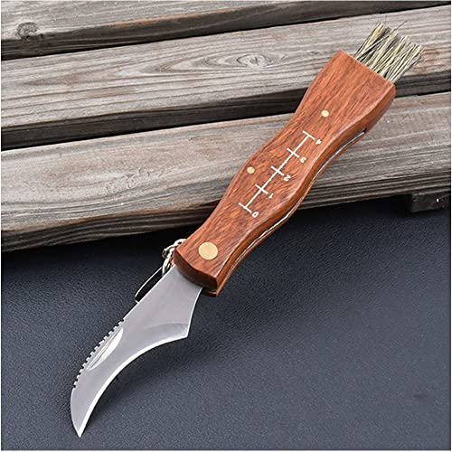 RUN-snail Mushroom Knife, Fungus Knife, Folding Camping Hunting Truffles Harvest Sharp Knives Natural Wood Handle Pocket Knife w Bristle Brush, SS Pruning Blade, Hardwood Handle
