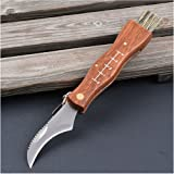 RUN-snail Mushroom Knife, Fungus Knife, Folding Camping Hunting Truffles Harvest Sharp Knives Natural Wood Handle Pocket Knife w/Bristle Brush, SS Pruning Blade, Hardwood Handle