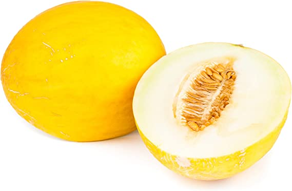 Orange Hybrid Seeds 25 Non-GMO Davids Garden Seeds Fruit Melon Savor 5651