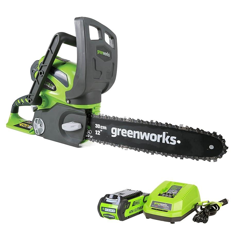 Greenworks 12-Inch 40V Cordless Chainsaw, 20262