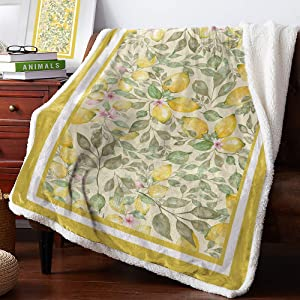 Sweet - Home Warm Reversible Thick Throw Blankets for Winter Camping Nap Travel, Watercolor Lemon, Ultra Soft Plush Fluffy Lamb Crystal Cashmere for Bed Coach, 50''x 80''
