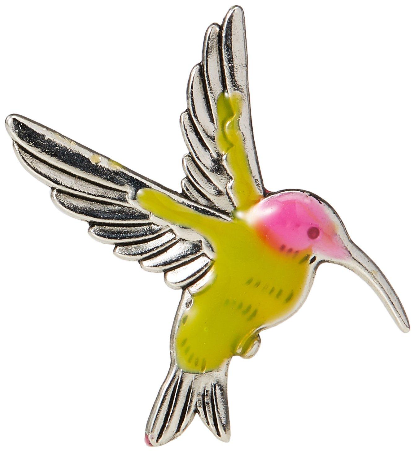 Amazon The Hummingbird Symbol Of Life And Joy Charm With Story